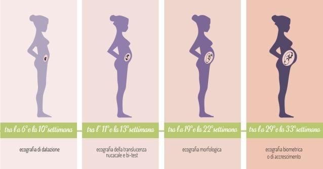 ecografie-gravidanza